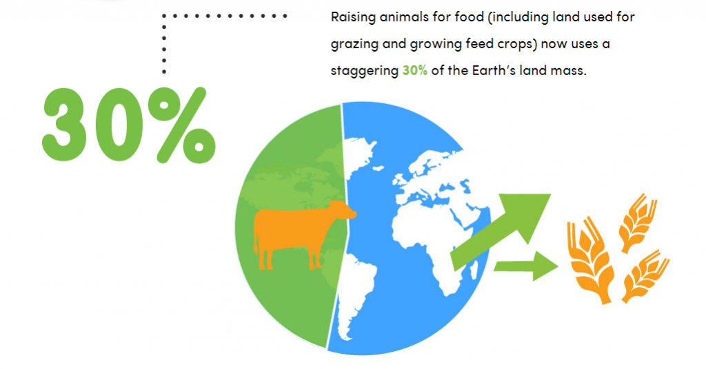 http://rebloggy.com/post/facts-earth-eggs-vegan-veganism-meat-dairy-environmentalism-i-got-an-ask-and-it/84544173777